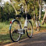 kerékpárral a fertő tó körül