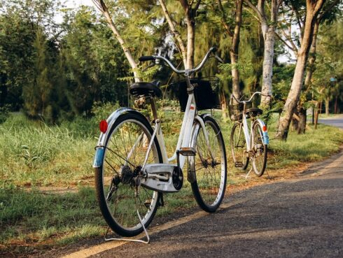 Fertő tó bicikli túra