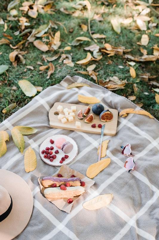 Piknik egy Arborétumban